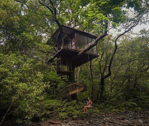 Treeful Treehousessa voi asua puihin rakennetuissa majoissa